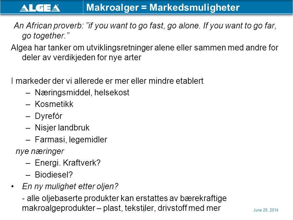 Makroalger = Markedsmuligheter