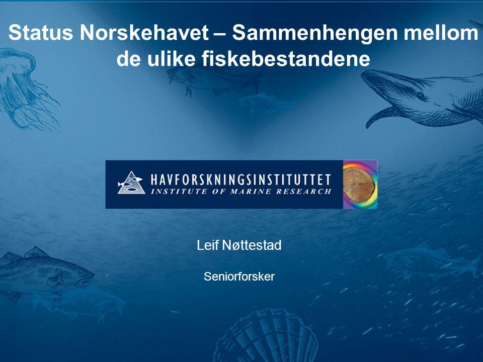 Status Norskehavet – Sammenhengen mellom de ulike fiskebestandene