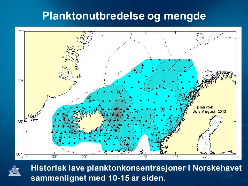 Planktonutbredelse og mengde