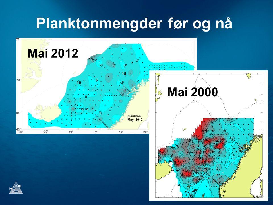 Planktonmengder før og nå