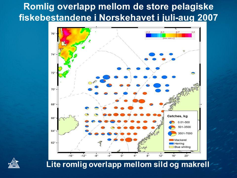 Romlig overlapp mellom de store pelagiske fiskebestandene i Norskehavet i juli-aug 2007