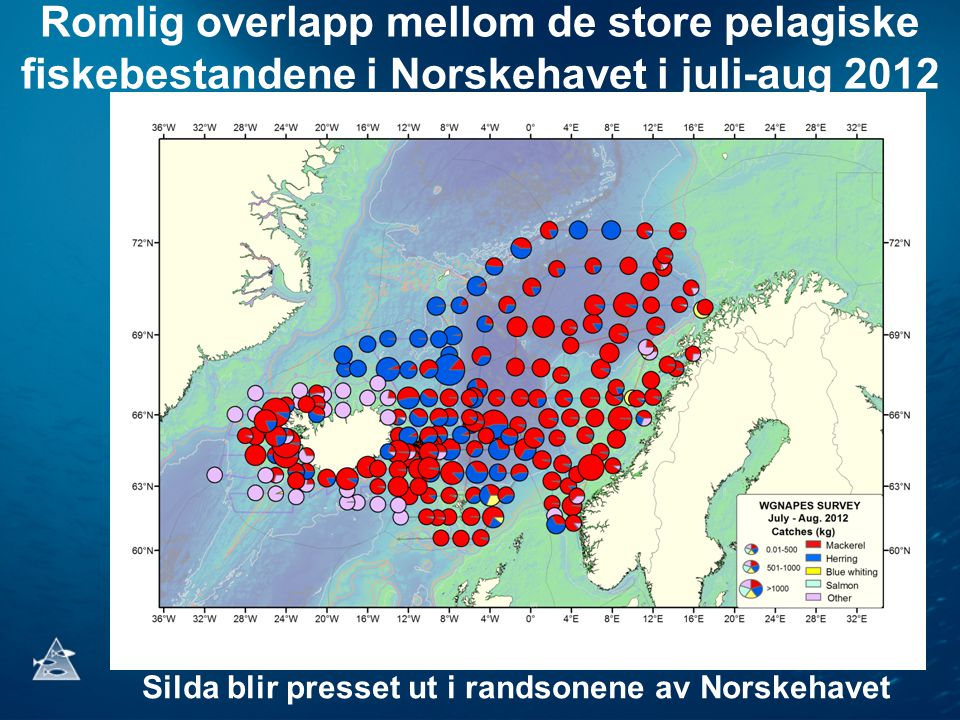 Romlig overlapp mellom de store pelagiske fiskebestandene i Norskehavet i juli-aug 2012