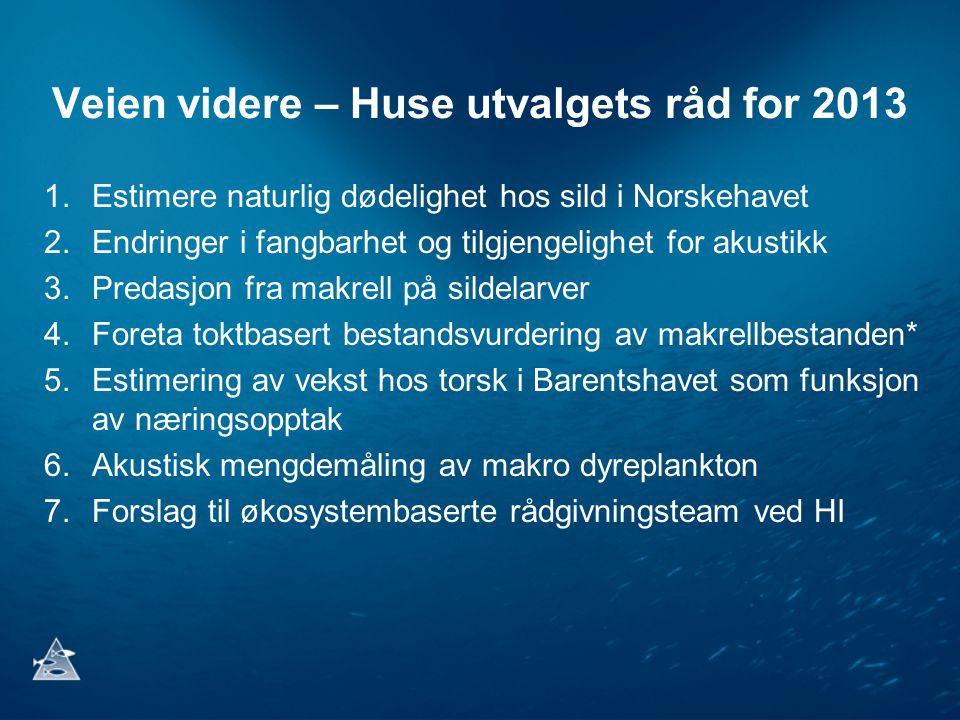 Veien videre – Huse utvalgets råd for 2013