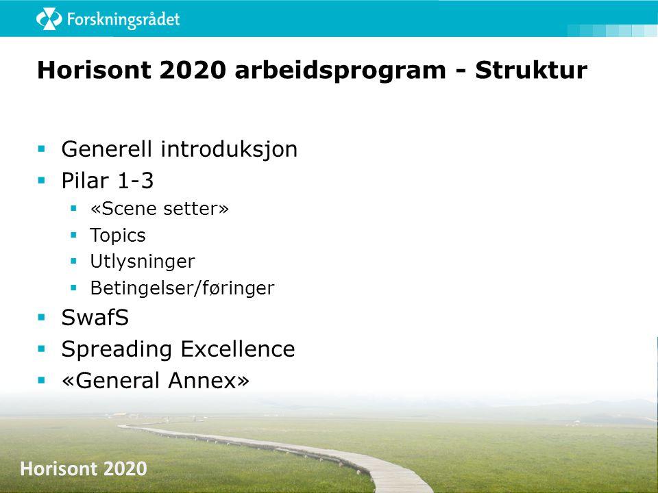 Horisont 2020 arbeidsprogram - Struktur