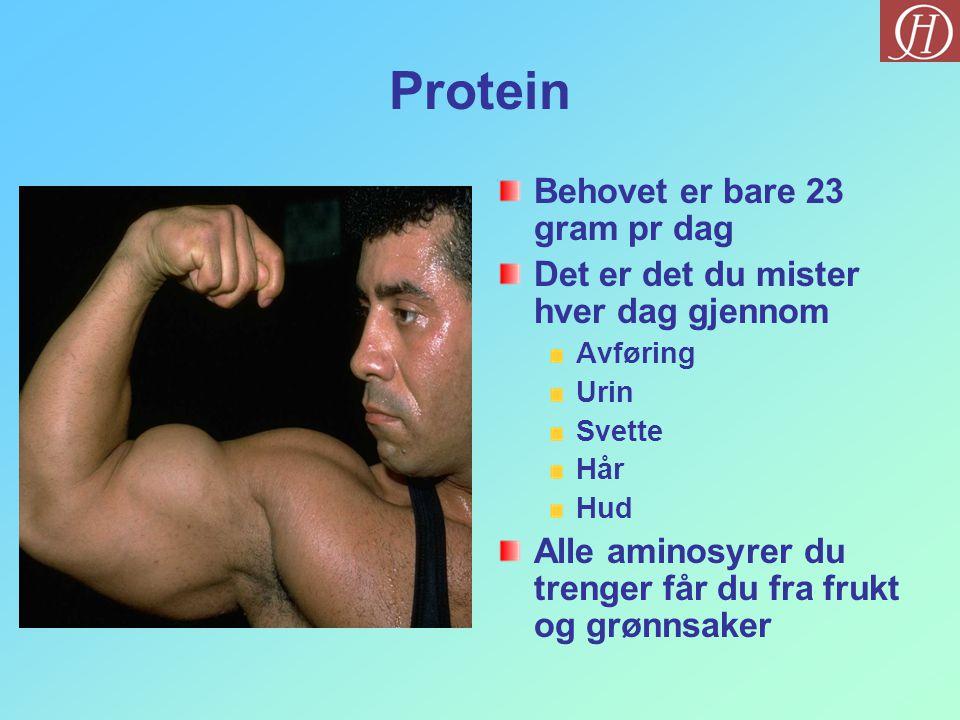 Protein Behovet er bare 23 gram pr dag