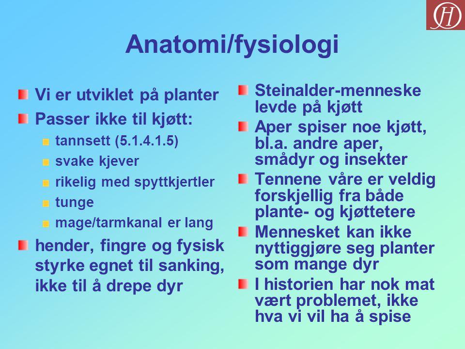 Anatomi/fysiologi Vi er utviklet på planter Passer ikke til kjøtt: