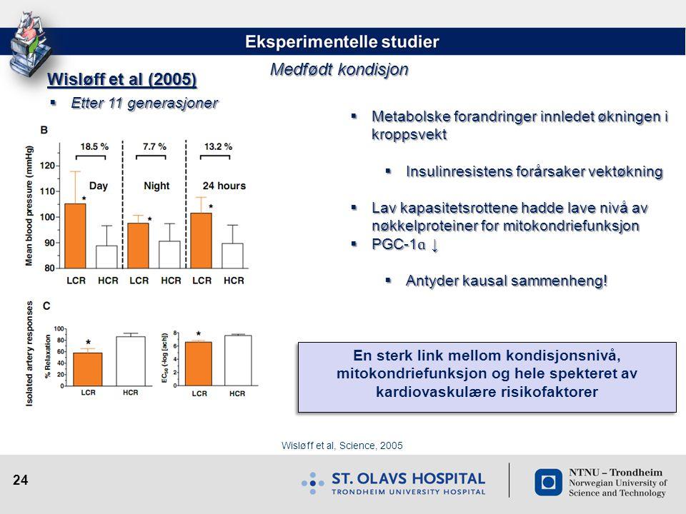 Medfødt kondisjon Wisløff et al (2005) Etter 11 generasjoner