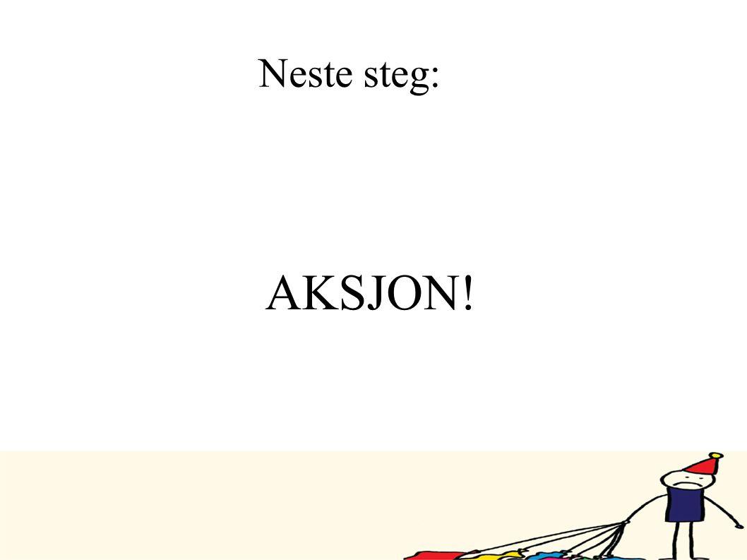 Neste steg: AKSJON! 23