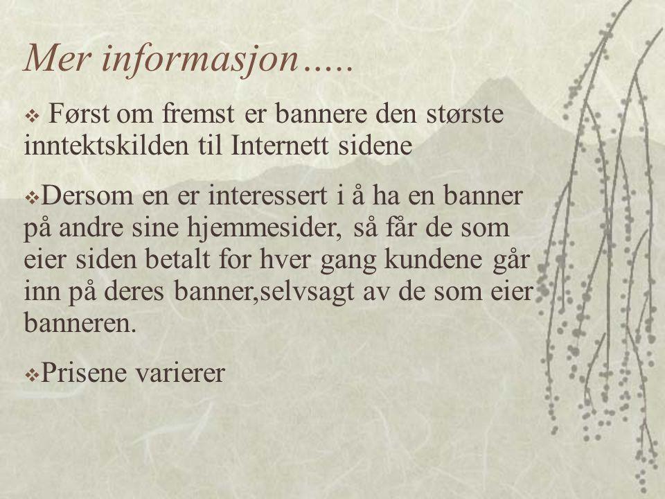 Mer informasjon….. Først om fremst er bannere den største inntektskilden til Internett sidene.