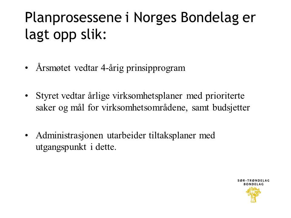 Planprosessene i Norges Bondelag er lagt opp slik: