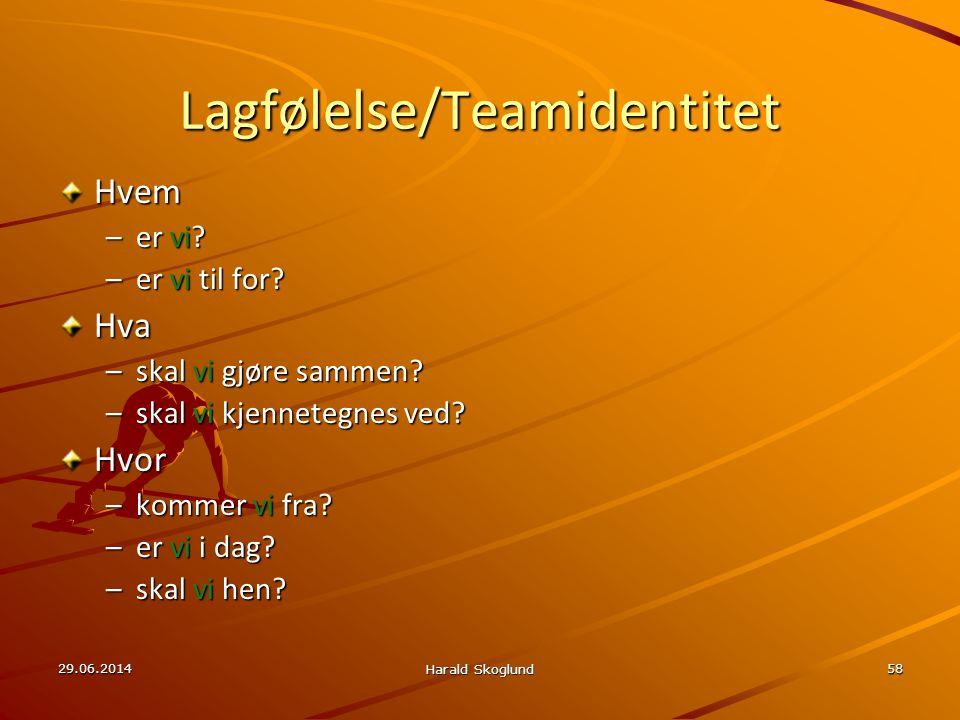 Lagfølelse/Teamidentitet