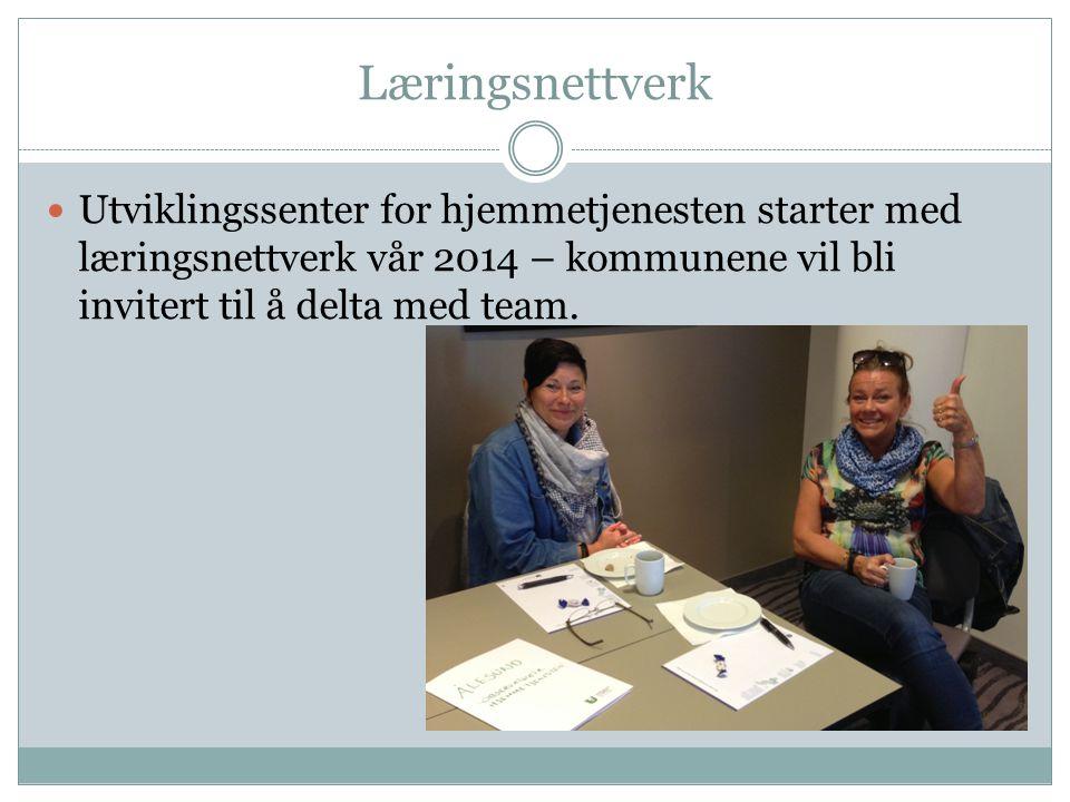 Læringsnettverk Utviklingssenter for hjemmetjenesten starter med læringsnettverk vår 2014 – kommunene vil bli invitert til å delta med team.