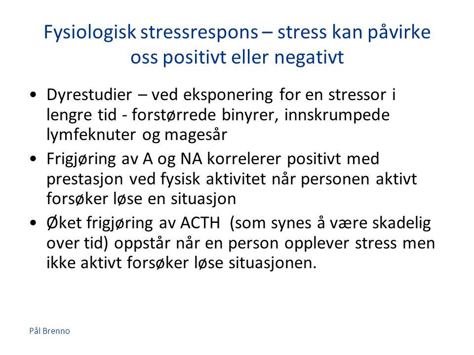 Fysiologisk stressrespons – stress kan påvirke oss positivt eller negativt