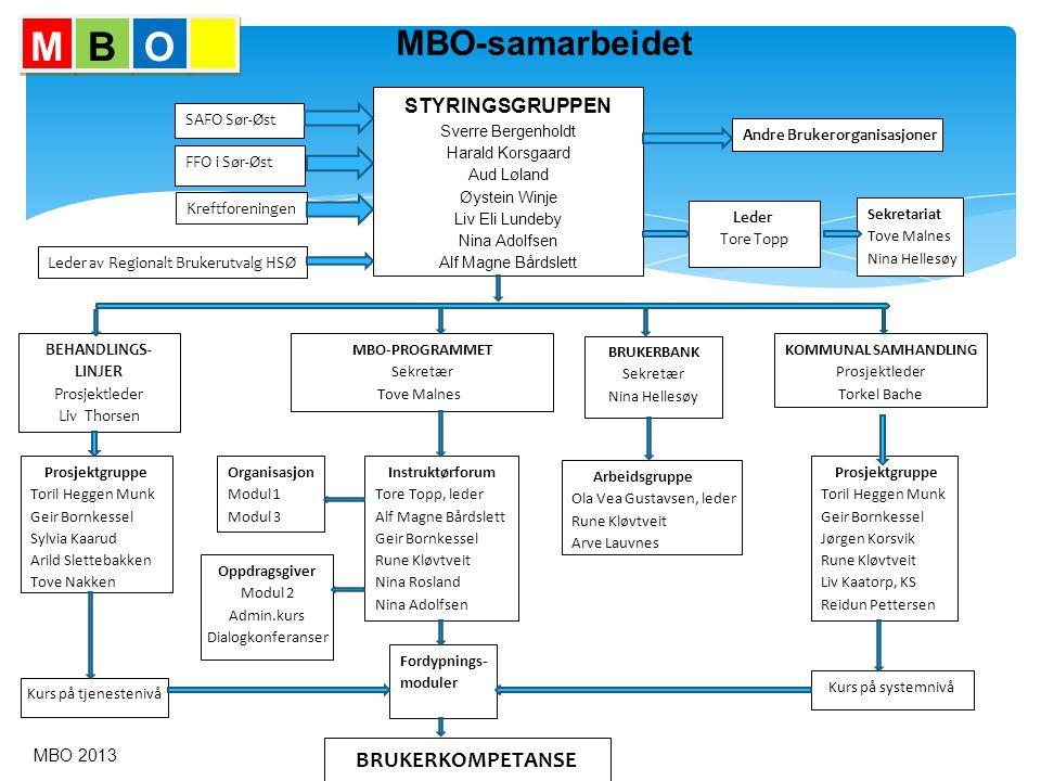 M B O MBO-samarbeidet BRUKERKOMPETANSE