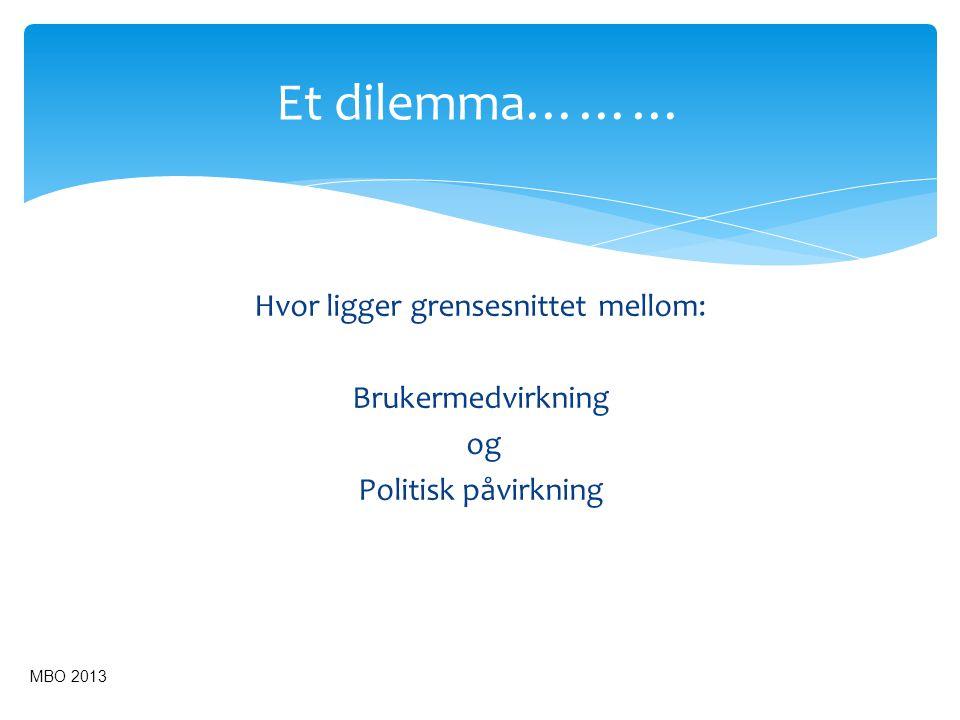 Et dilemma……… Hvor ligger grensesnittet mellom: Brukermedvirkning og Politisk påvirkning