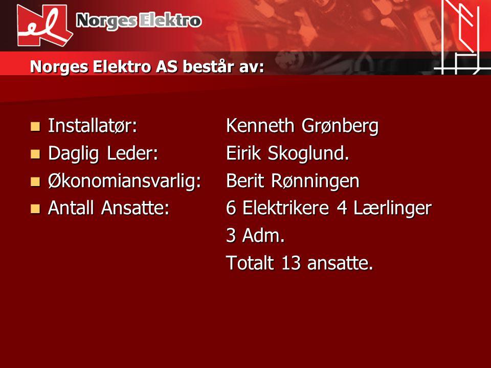 Norges Elektro AS består av: