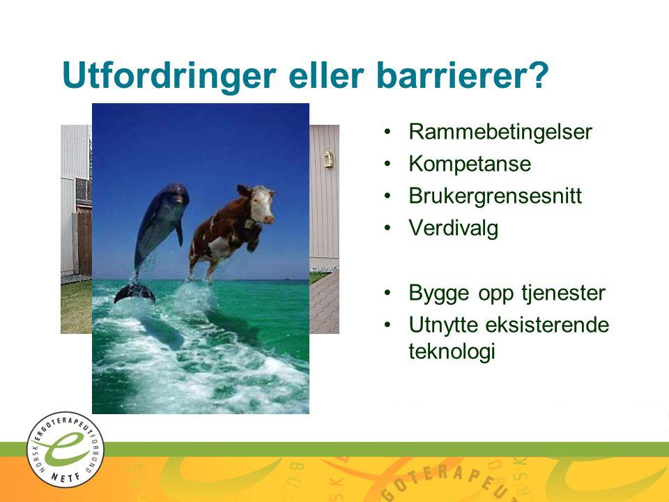 Utfordringer eller barrierer