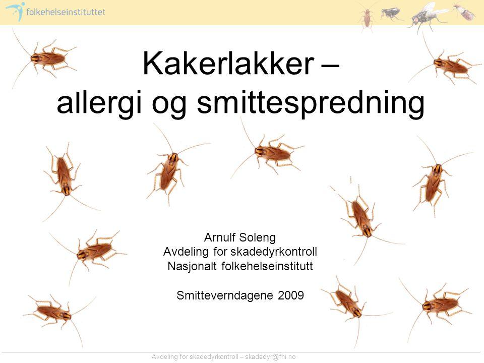 Kakerlakker – allergi og smittespredning