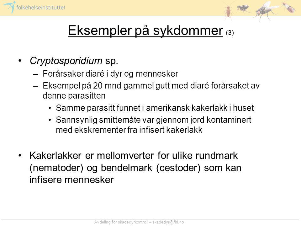 Eksempler på sykdommer (3)