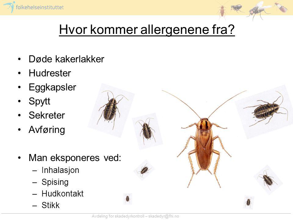 Hvor kommer allergenene fra