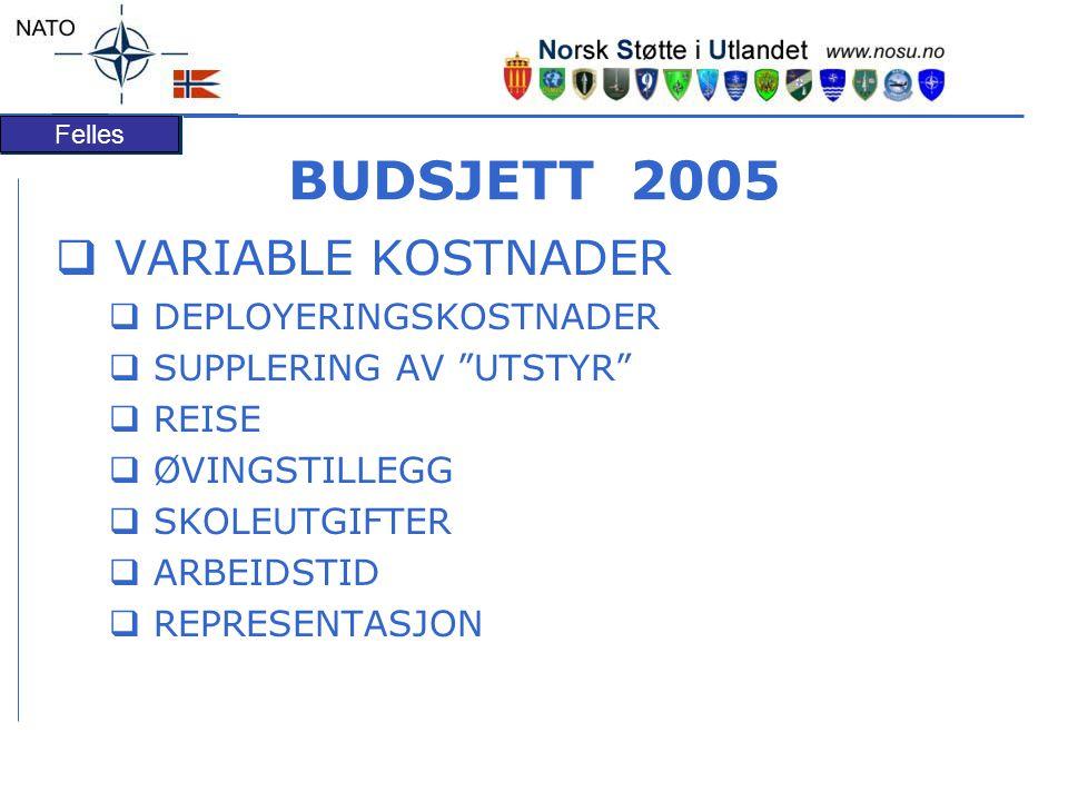 BUDSJETT 2005 VARIABLE KOSTNADER DEPLOYERINGSKOSTNADER