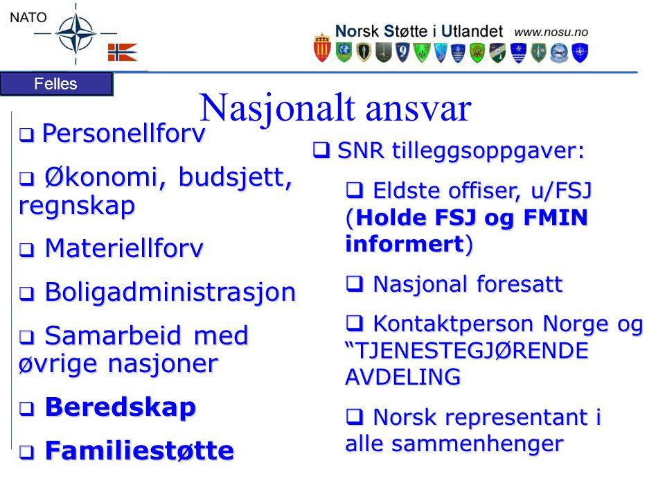 Nasjonalt ansvar Personellforv Økonomi, budsjett, regnskap