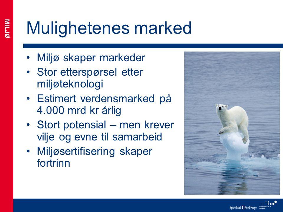 Mulighetenes marked Miljø skaper markeder