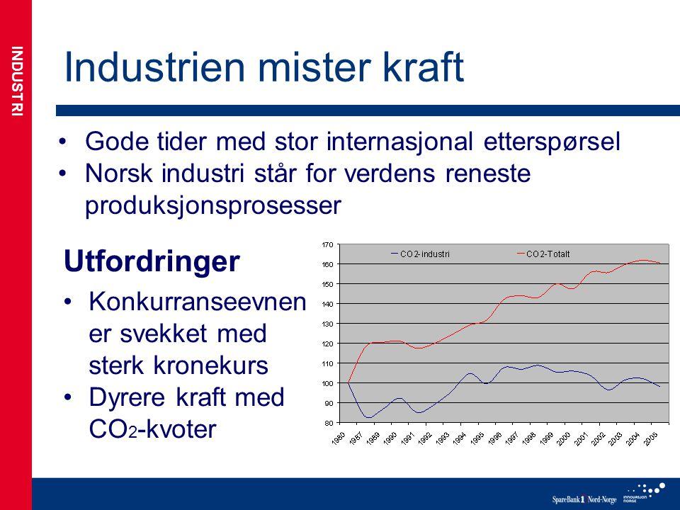 Industrien mister kraft