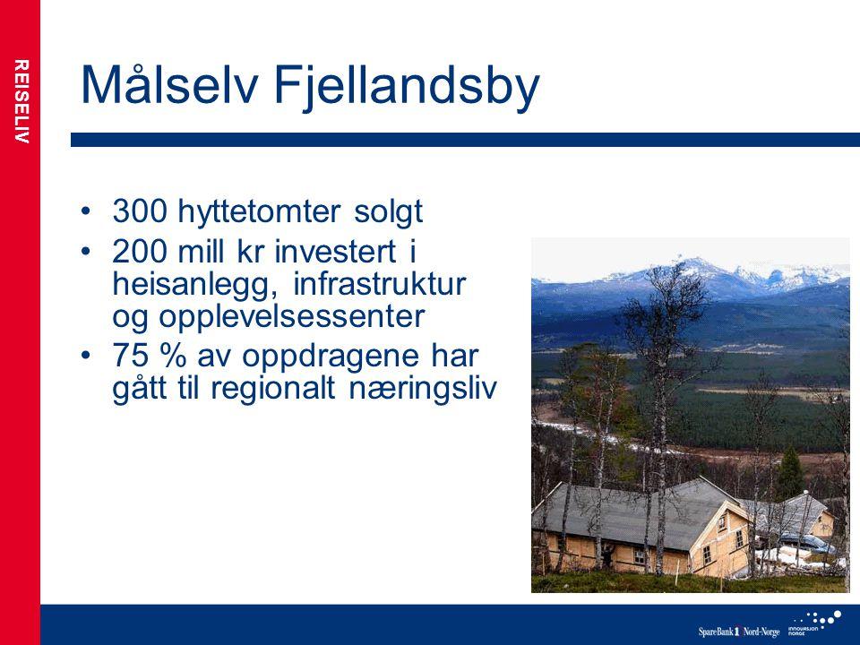 Målselv Fjellandsby 300 hyttetomter solgt