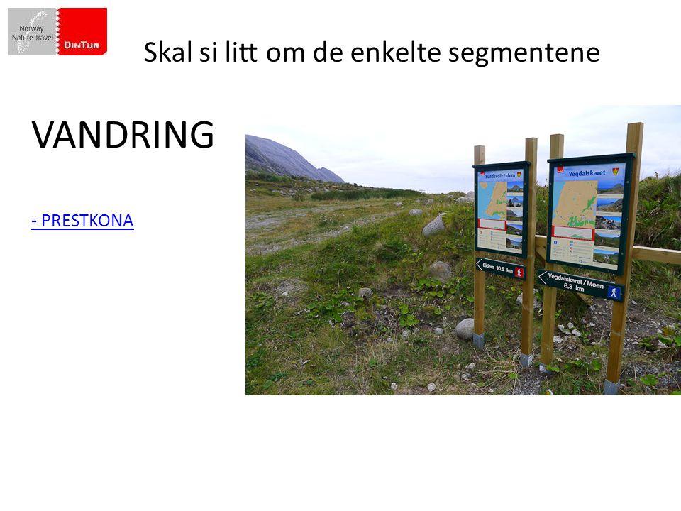 Din Tur besluttet i 2009 å gjøre en skikkelig satsing på Vandring
