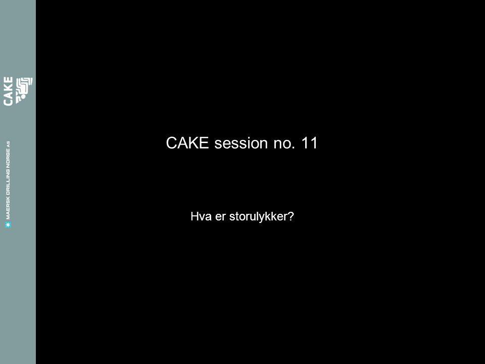 CAKE session no. 11 Hva er storulykker