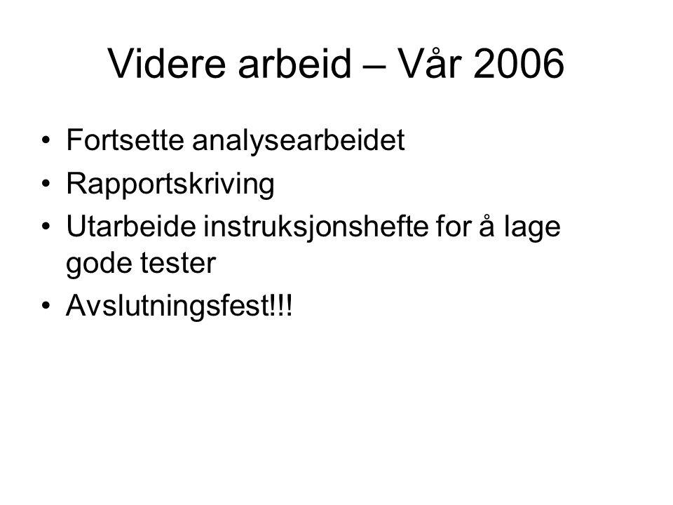 Videre arbeid – Vår 2006 Fortsette analysearbeidet Rapportskriving