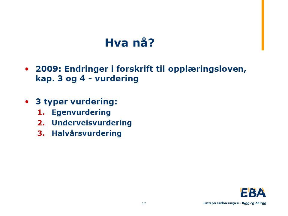 Hva nå 2009: Endringer i forskrift til opplæringsloven, kap. 3 og 4 - vurdering. 3 typer vurdering: