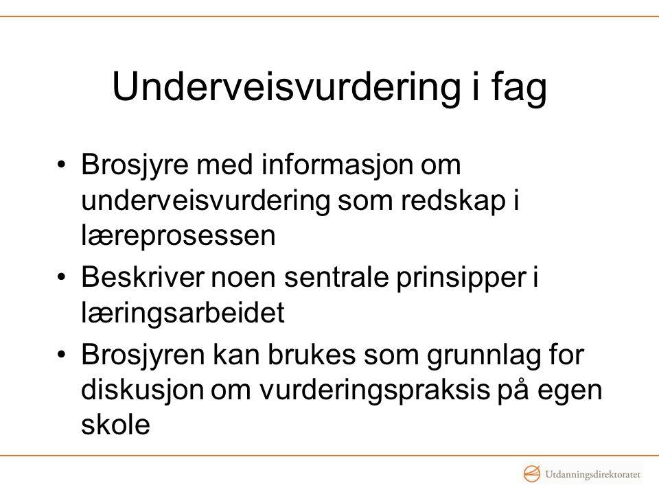 Underveisvurdering i fag