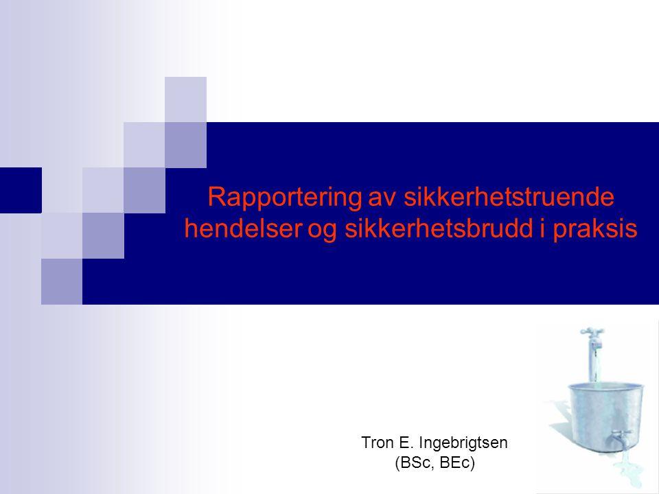 Tron E. Ingebrigtsen (BSc, BEc)