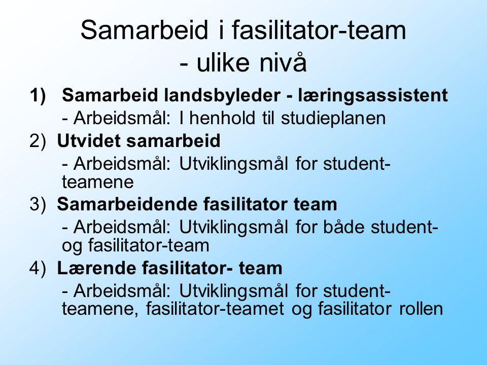 Samarbeid i fasilitator-team - ulike nivå