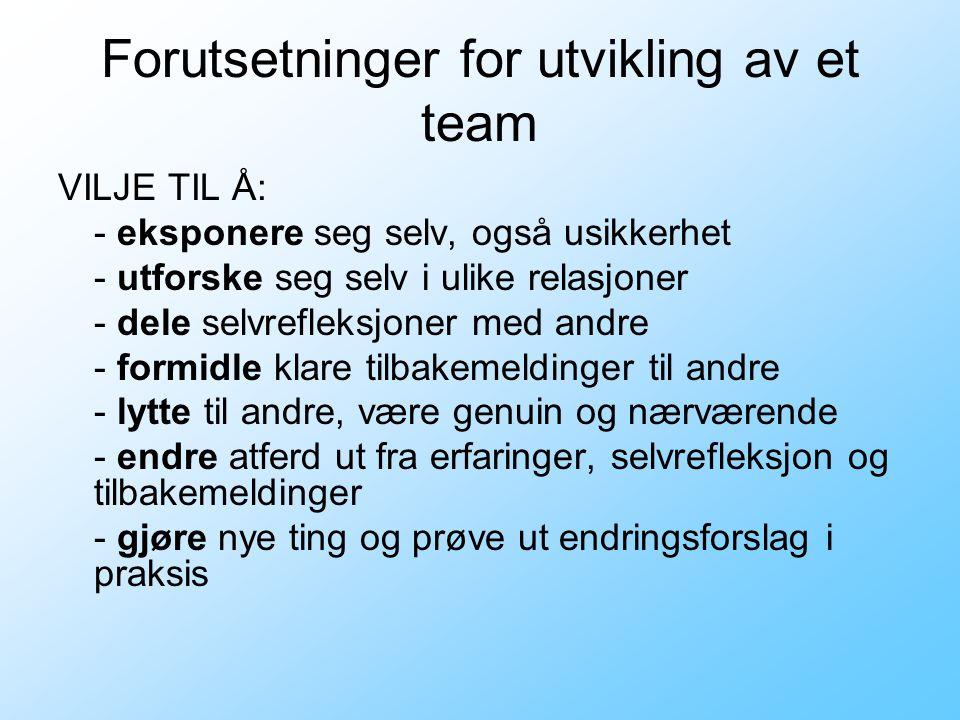Forutsetninger for utvikling av et team