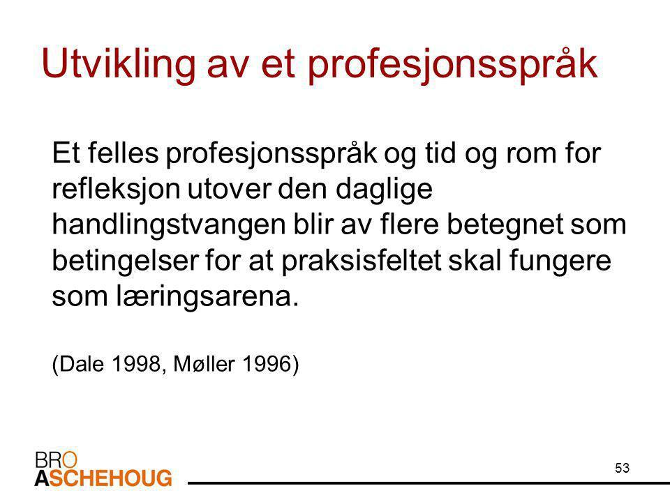 Utvikling av et profesjonsspråk