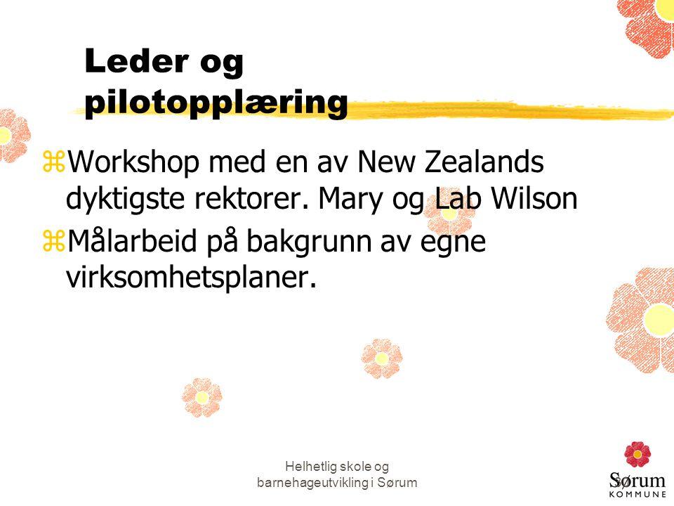 Leder og pilotopplæring