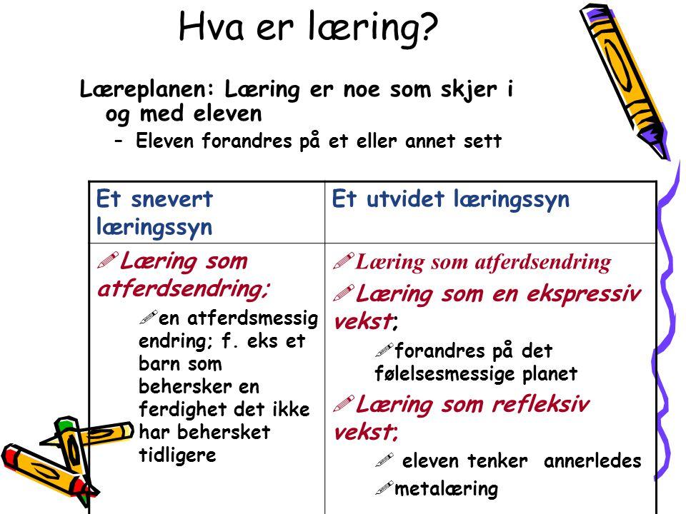 Hva er læring Læreplanen: Læring er noe som skjer i og med eleven