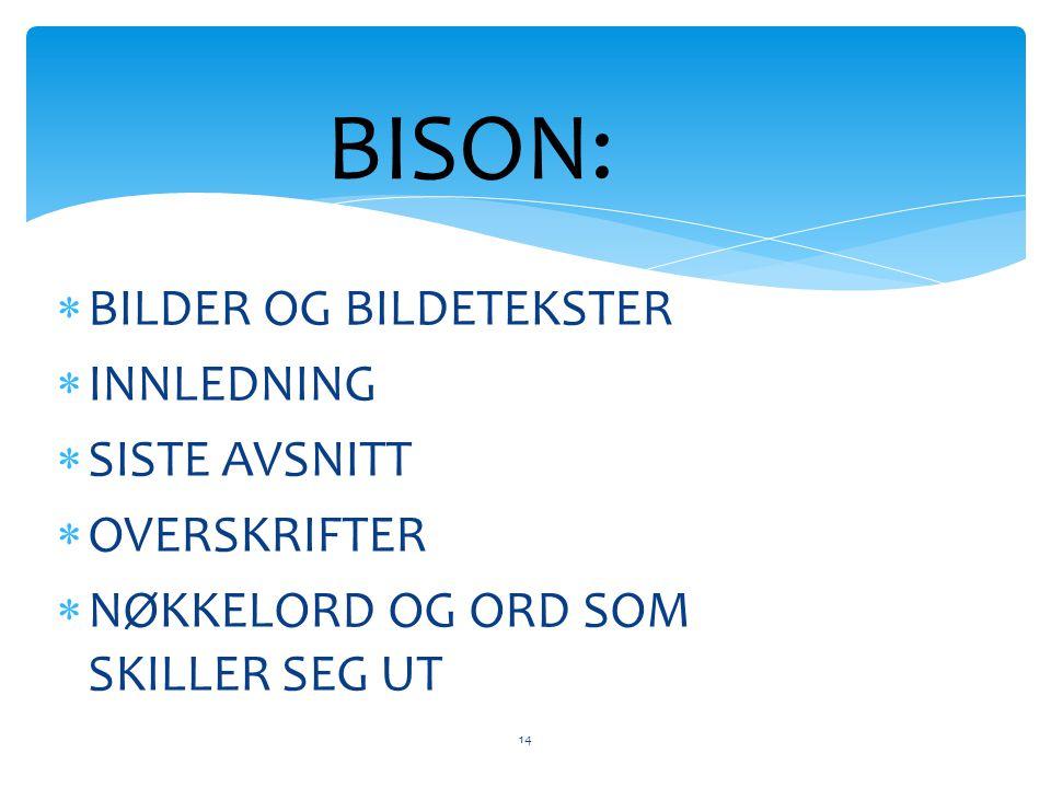 BISON: BILDER OG BILDETEKSTER INNLEDNING SISTE AVSNITT OVERSKRIFTER