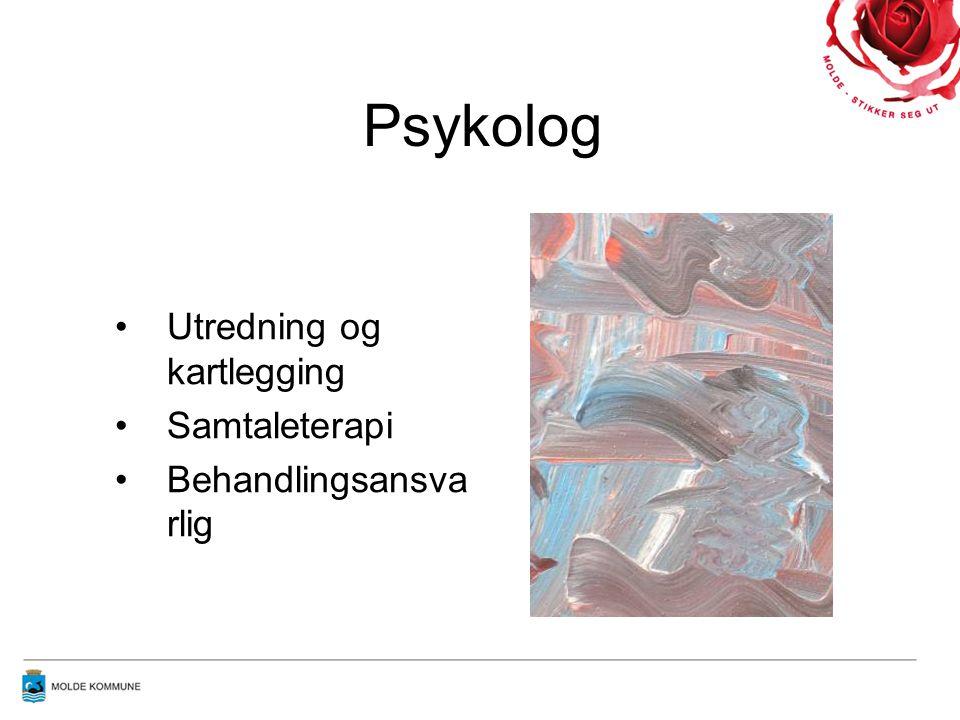 Psykolog Utredning og kartlegging Samtaleterapi Behandlingsansvarlig
