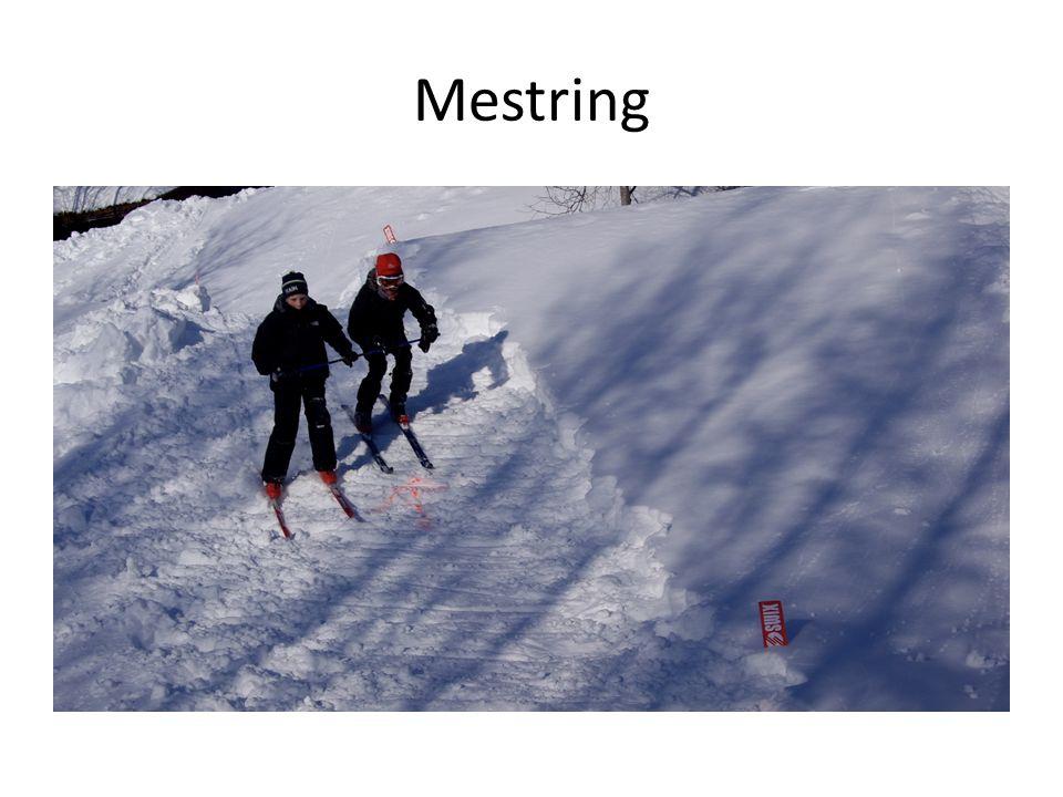 Mestring