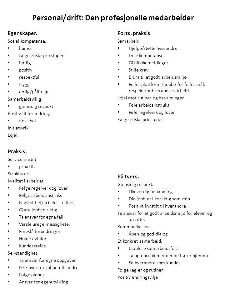 Personal/drift: Den profesjonelle medarbeider