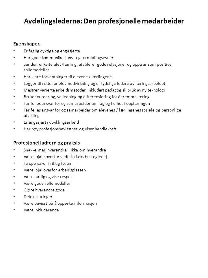 Avdelingslederne: Den profesjonelle medarbeider
