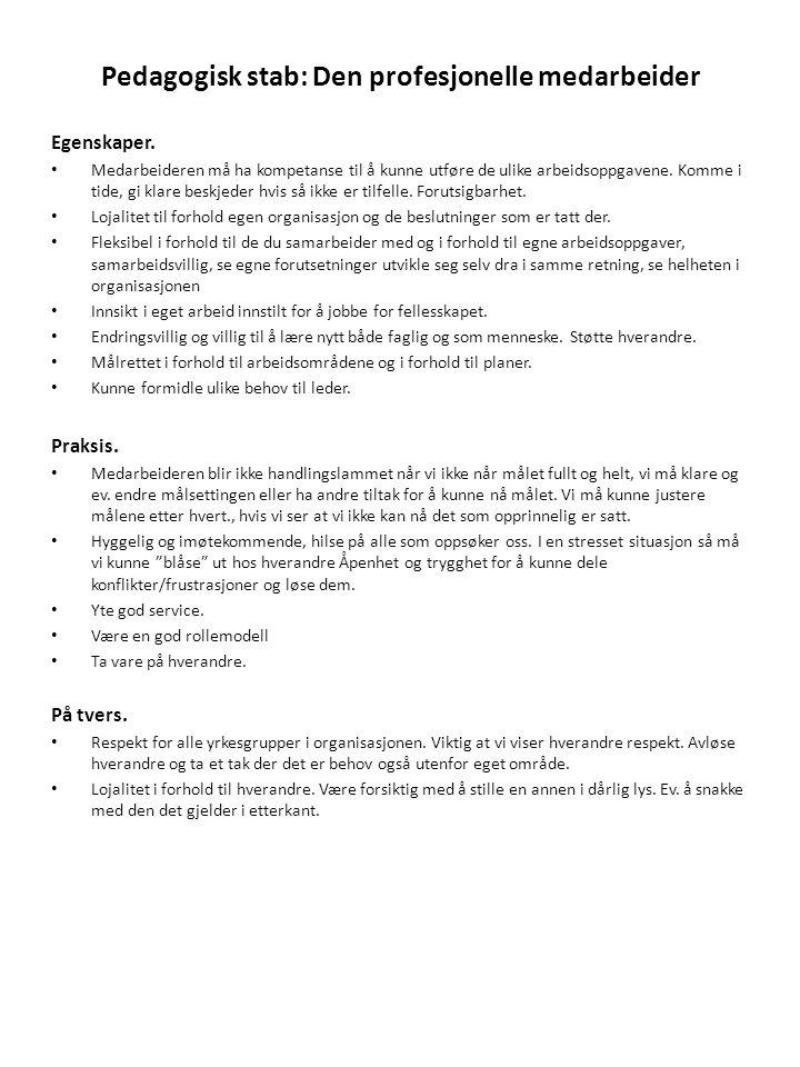 Pedagogisk stab: Den profesjonelle medarbeider