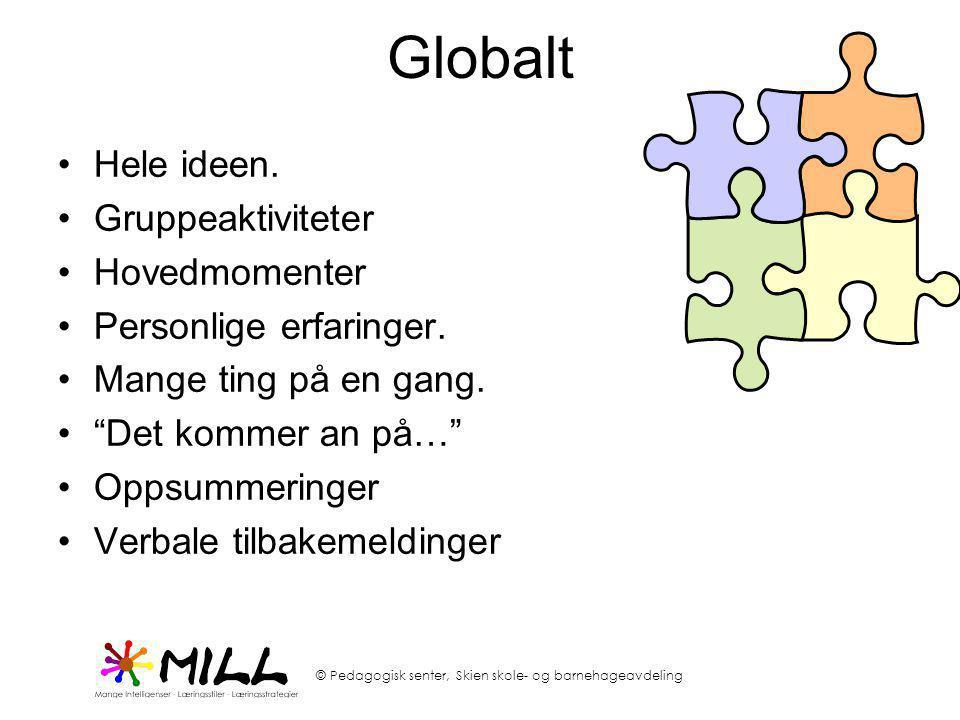 Globalt Hele ideen. Gruppeaktiviteter Hovedmomenter