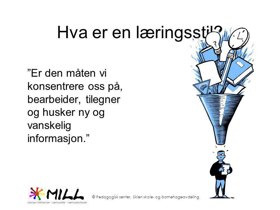 Hva er en læringsstil.