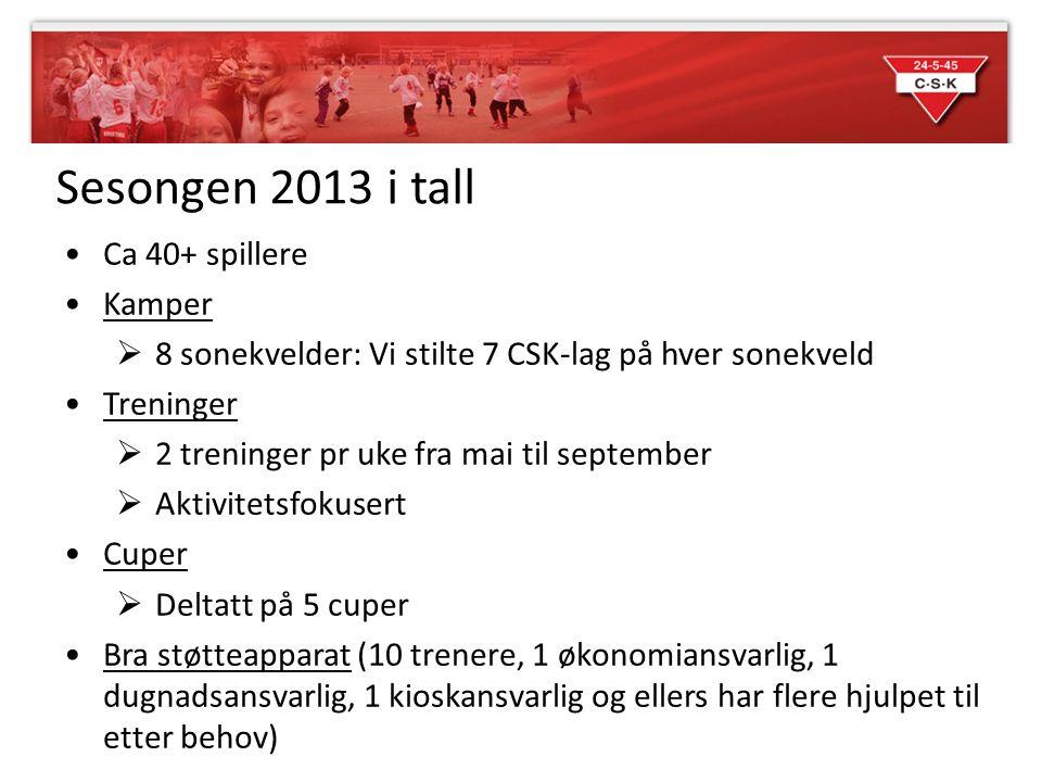 Sesongen 2013 i tall Ca 40+ spillere Kamper
