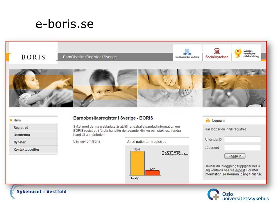 e-boris.se
